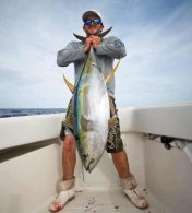 Yellowfin tuna - Photo courtesy of Steve Dougherty from Florida Sport Fishing Magazine